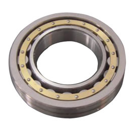 Extra Large Size Bearings